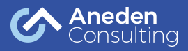 Aneden Consulting Inc